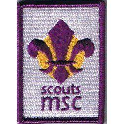 LIS MSC FEDERAL