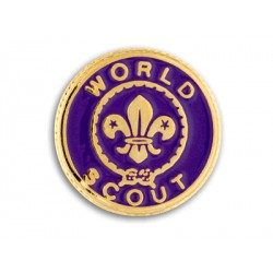 PIN SOLAPA WORD SCOUT