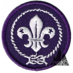 151210 MUNDIAL SCOUT 7 CM...