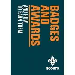 917323 BADGES AND AWARDS