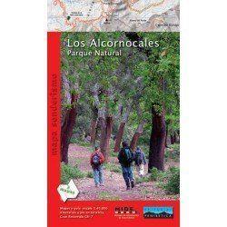 965270 LOS ALCORNOCALES...